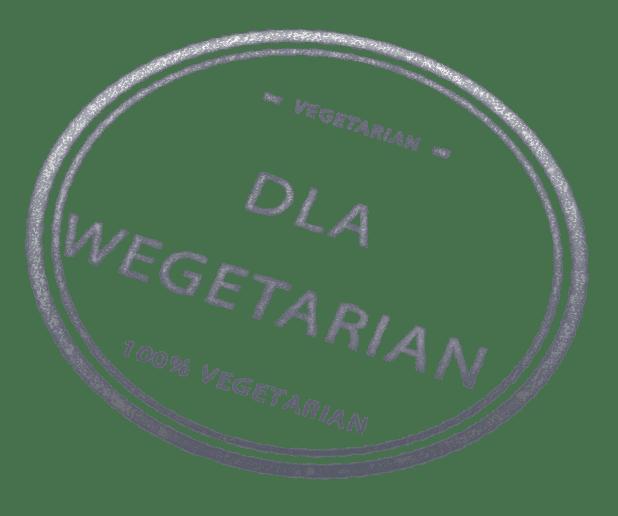 dla wegetarian