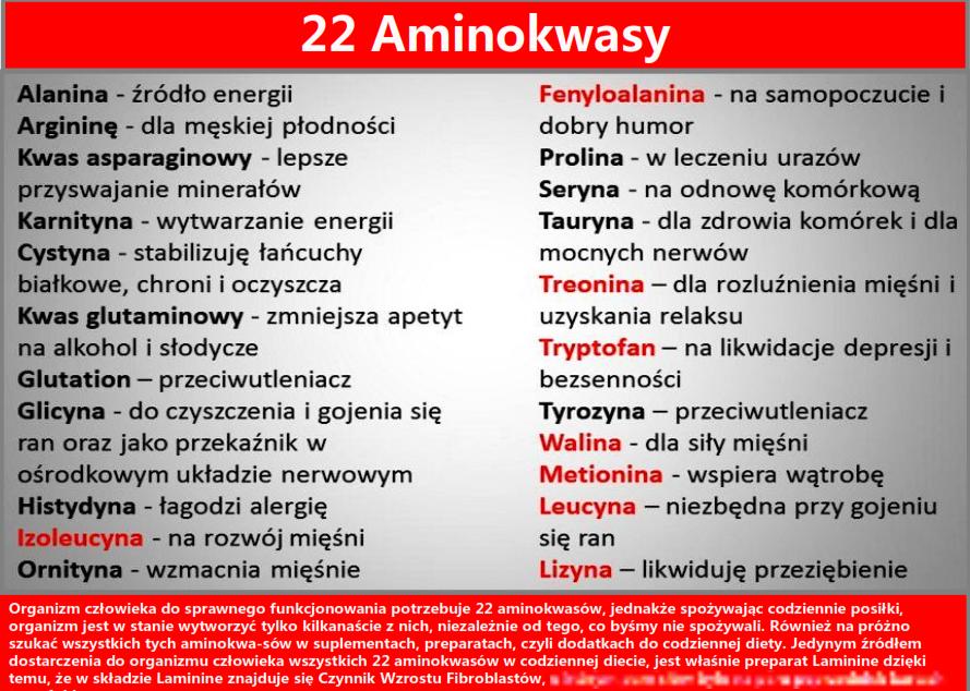 niezbedne_aminokwasy