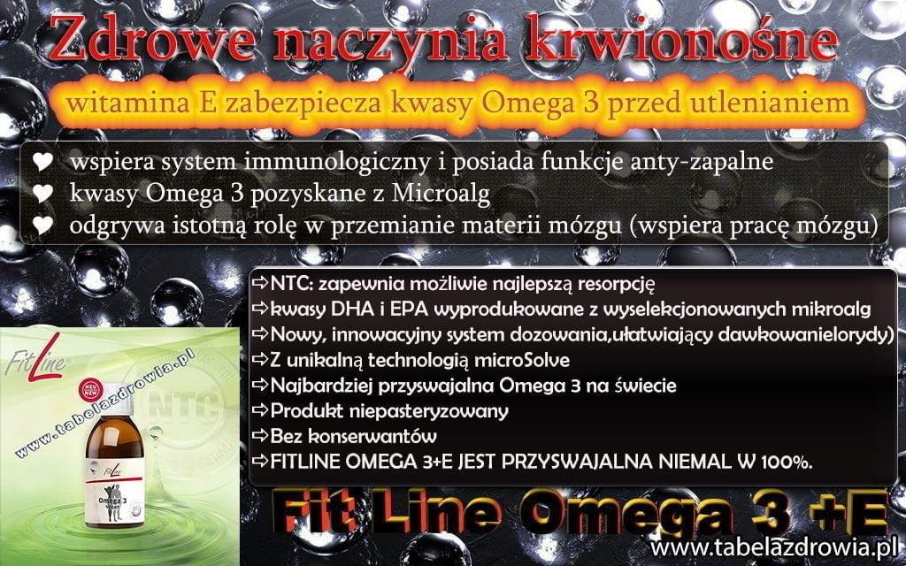 Fitline Omega 3 + E