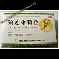 JING FU KANG