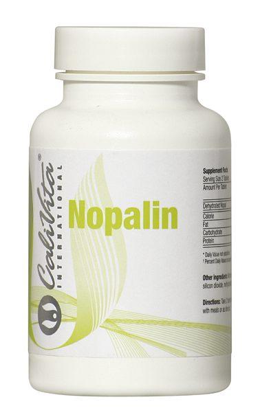 Nopalin - źródło błonnika