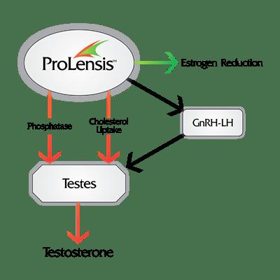 ProLensis