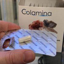 Colamina na odporność