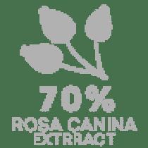 ekstrakt z róży witamina C