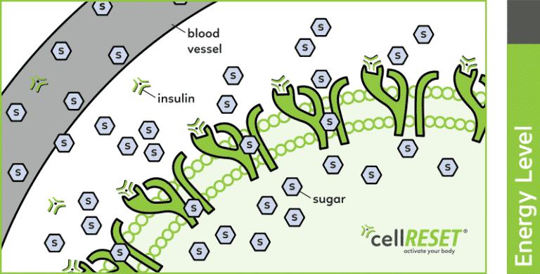 normalne komórki
