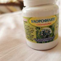Chlorofil,Chlorophyll
