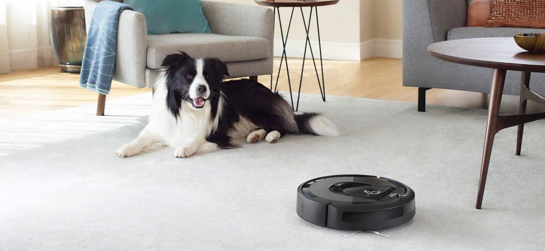 irobot Roomba i pies