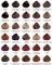 Naturalna farba do włosów – Sanotint Classic