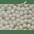 CUKROWA KRUPKA 500g.homeopatia